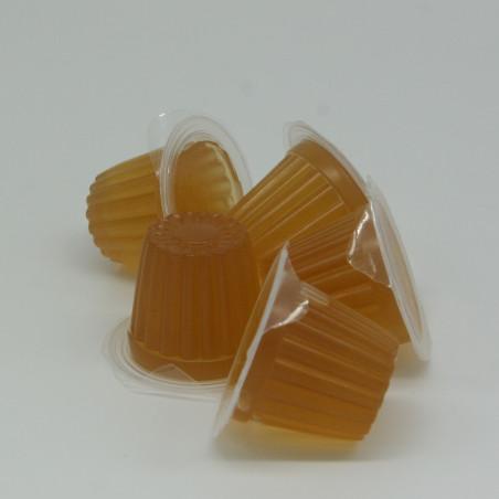 Petit pot de gelée protéiné saveur miel, idéal pour l'alimentation des colonies de fourmis.