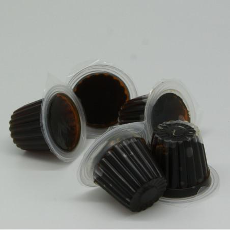 Petit pot de gelée protéiné saveur sucre roux, idéal pour l'alimentation des colonies de fourmis.