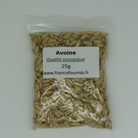 Graine d'avoine de qualité biologique garantie, conditionné en sachet zip de 25g.