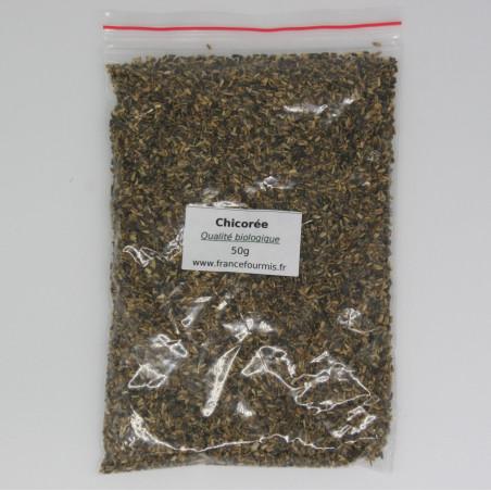 Graine de chicorée de qualité biologique, conditionné en sachet zip de 50g.