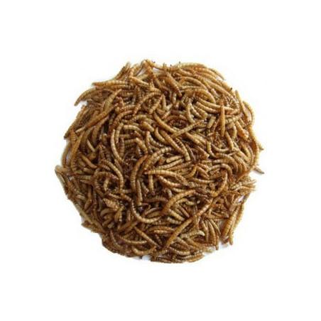 Vers de farine déshydraté conditionné en sachet ZIP de 25g
