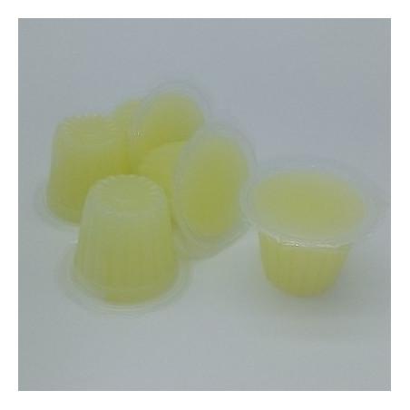 Petit pot de gelée protéiné saveur banane, idéal pour l'alimentation des colonies de fourmis.